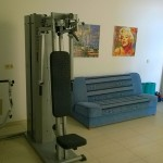 WP_20140531_002-Fitness